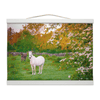 Wall Hanging - Horse and Donkey during Irish Sunrise Wall Hanging Moods of Ireland 12x8 inch White