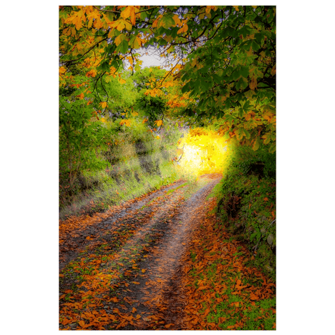 Print - Path to Cullinan Cottage, County Clare Poster Print Moods of Ireland 12x18 inch