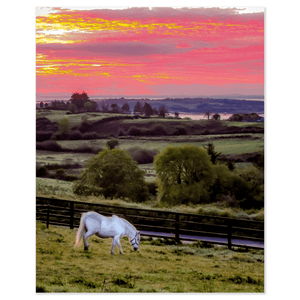Print - White Horse under Irish Sunrise, County Clare - James A. Truett - Moods of Ireland - Irish Art