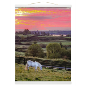 Wall Hanging - White Horse under Irish Sunrise, County Clare Wall Hanging Moods of Ireland 12x16 inch White