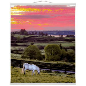 Wall Hanging - White Horse under Irish Sunrise, County Clare Wall Hanging Moods of Ireland 20x24 inch White