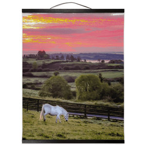 Wall Hanging - White Horse under Irish Sunrise, County Clare Wall Hanging Moods of Ireland 16x20 inch Black