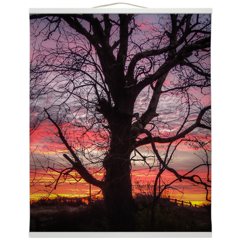 Image of Wall Hanging - Irish Sunrise and Hibernating Tree Irish Wall Hanging Moods of Ireland 20x24 inch White
