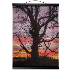 Wall Hanging - Irish Sunrise and Hibernating Tree Irish Wall Hanging Moods of Ireland 12x16 inch Black