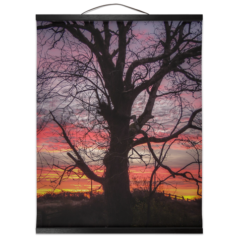 Image of Wall Hanging - Irish Sunrise and Hibernating Tree Irish Wall Hanging Moods of Ireland 16x20 inch Black