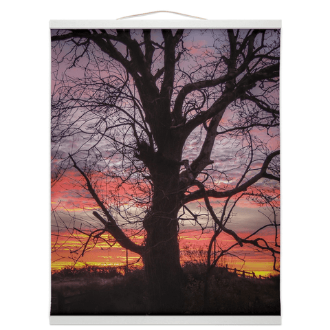 Image of Wall Hanging - Irish Sunrise and Hibernating Tree Irish Wall Hanging Moods of Ireland 16x20 inch White