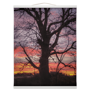 Wall Hanging - Irish Sunrise and Hibernating Tree Irish Wall Hanging Moods of Ireland 16x20 inch White