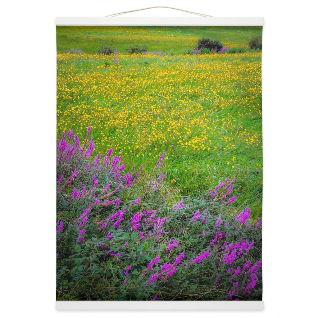 Wall Hanging - Irish Countryside Summer Wildflower Meadow Wall Hanging Moods of Ireland 12x16 inch White