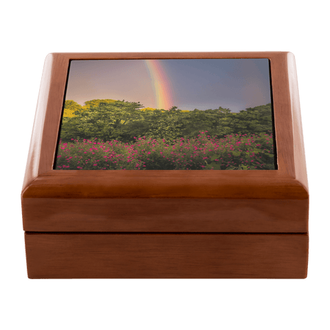 Jewelry Box - Irish Rainbow and Wildflowers in County Clare - James A. Truett - Moods of Ireland - Irish Art