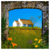 Print - Thatched Cottage on a Hill, County Clare Poster Print Moods of Ireland 10x10 inch