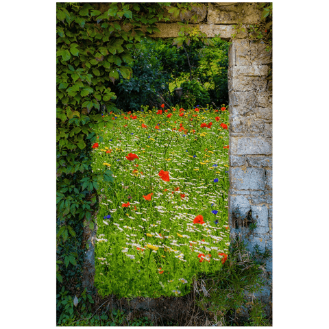 Print - Magical Wildflower Meadow in County Clare Poster Print Moods of Ireland 24x36 inch