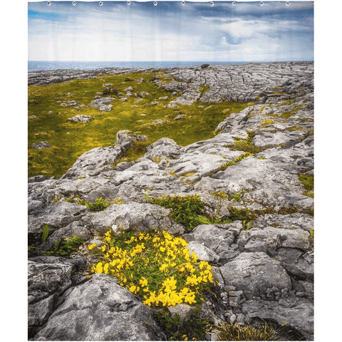 Image of Shower Curtain - Gorse in the Rugged Burren Limestone - James A. Truett - Moods of Ireland - Irish Art