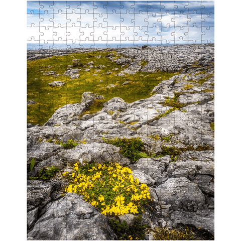 Image of Puzzle - Gorse in the Rugged Burren Limestone - James A. Truett - Moods of Ireland - Irish Art