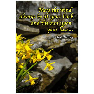 Print - Irish Blessing with Daffodils and Stone Wall Poster Print Moods of Ireland 24x36 inch
