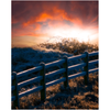 Print - Flourishing Sunrise over Frosty Fence, County Clare - James A. Truett - Moods of Ireland - Irish Art