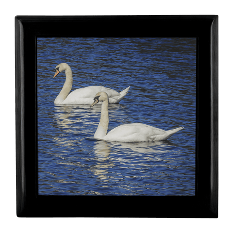 Jewelry Box -White Swans, County Clare, Ireland Jewelry Box teelaunch Ebony Black