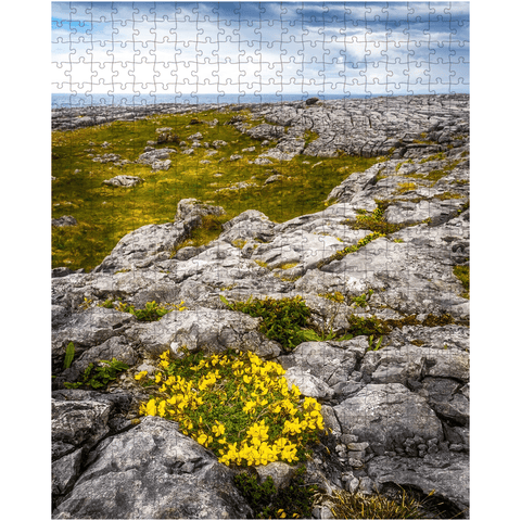 Puzzle - Gorse in the Rugged Burren Limestone - James A. Truett - Moods of Ireland - Irish Art