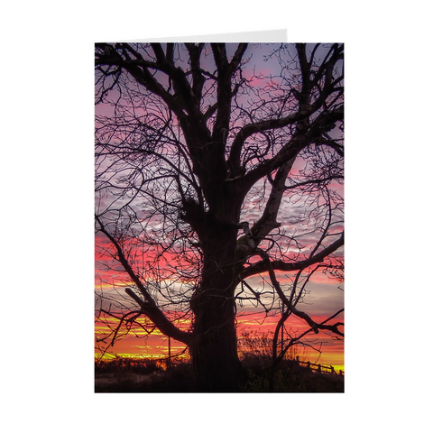 Folded Note Cards - Irish Sunrise and Hibernating Tree - James A. Truett - Moods of Ireland - Irish Art