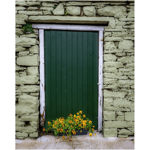 Image of Print - Pansies and Painted Old Stone Building, Cooraclare, County Clare - James A. Truett - Moods of Ireland - Irish Art