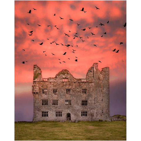 Image of Print - Birds over Leamaneh Castle, County Clare Poster Print Moods of Ireland 8x10 inch