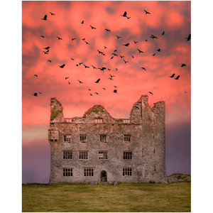 Print - Birds over Leamaneh Castle, County Clare Poster Print Moods of Ireland 8x10 inch
