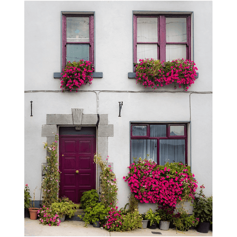 Image of Print - Flower Adorned Homefront in Kinvara, County Galway Poster Print Moods of Ireland 8x10 inch