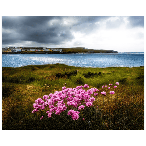 Print - Sea Pinks on Kilkee Bay, County Clare - James A. Truett - Moods of Ireland - Irish Art