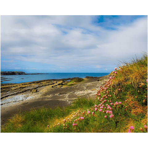Image of Print - Spanish Point, County Clare, in Spring Poster Print Moods of Ireland 8x10 inch