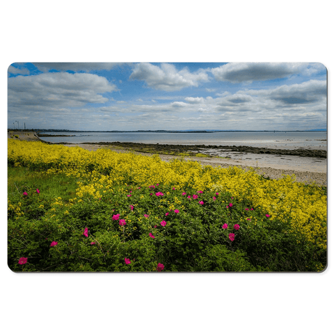 Desk Mat - Wildflowers along Galway Bay - James A. Truett - Moods of Ireland - Irish Art