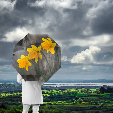 Umbrellas - Aunt DJ's Daffodils Umbrella Moods of Ireland
