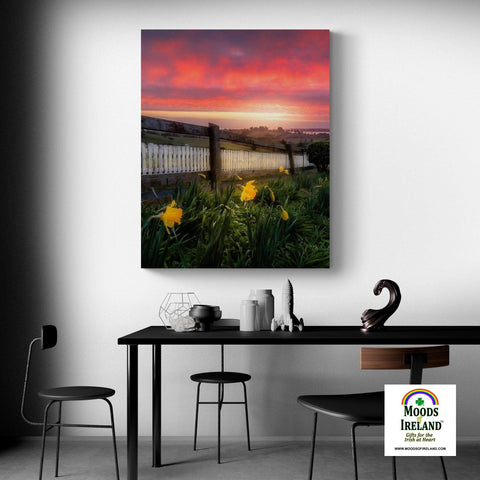Image of Canvas Wrap - Daffodils and Spring Sunrise, County Clare, Ireland - James A. Truett - Moods of Ireland - Irish Art