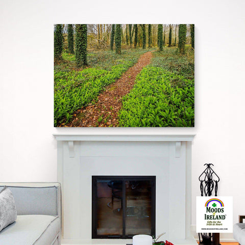 Image of Canvas Wrap - Coole Park Path, County Galway - James A. Truett - Moods of Ireland - Irish Art