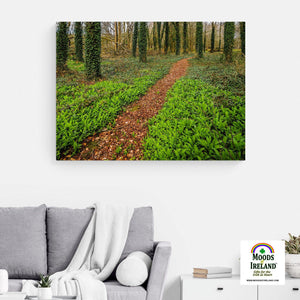 Canvas Wrap - Coole Park Path, County Galway - James A. Truett - Moods of Ireland - Irish Art