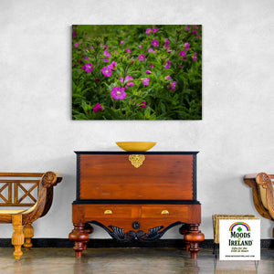 Canvas Wrap - Great Willowherb Blossoms in the Irish Countryside - James A. Truett - Moods of Ireland - Irish Art