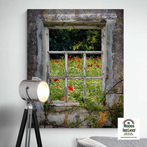 Image of Canvas Wrap - Irish Wildflower Meadow framed by Weathered Window, County Clare - James A. Truett - Moods of Ireland - Irish Art