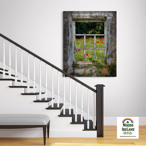 Canvas Wrap - Irish Wildflower Meadow framed by Weathered Window, County Clare - James A. Truett - Moods of Ireland - Irish Art