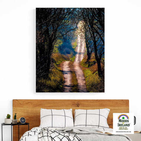 Image of Canvas Wrap - County Clare Boreen in Spring - James A. Truett - Moods of Ireland - Irish Art