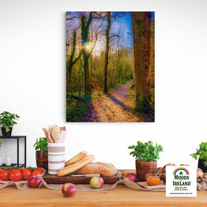 Canvas Wrap - Autumn Path in Dromore Wood, County Clare Canvas Wrap Moods of Ireland