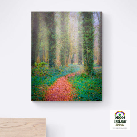 Image of Canvas Wrap - Misty Path in Coole Park, County Galway - James A. Truett - Moods of Ireland - Irish Art