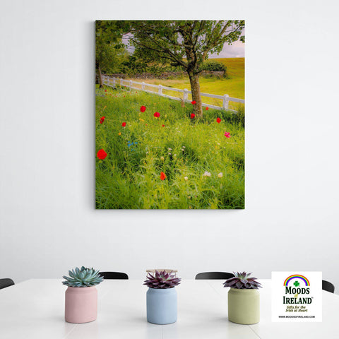 Image of Canvas Wrap - Poppy Field in Ballynacally, County Clare - James A. Truett - Moods of Ireland - Irish Art
