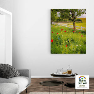 Canvas Wrap - Poppy Field in Ballynacally, County Clare - James A. Truett - Moods of Ireland - Irish Art