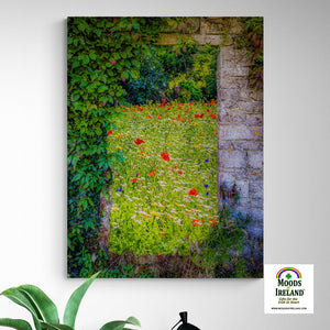 Canvas Wrap - Magical Irish Wildflower Meadow in County Clare - James A. Truett - Moods of Ireland - Irish Art