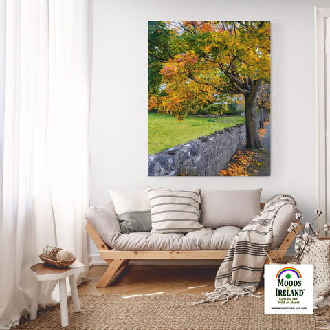 Image of Canvas Wrap - Autumn Tree at Kildysart, County Clare - James A. Truett - Moods of Ireland - Irish Art