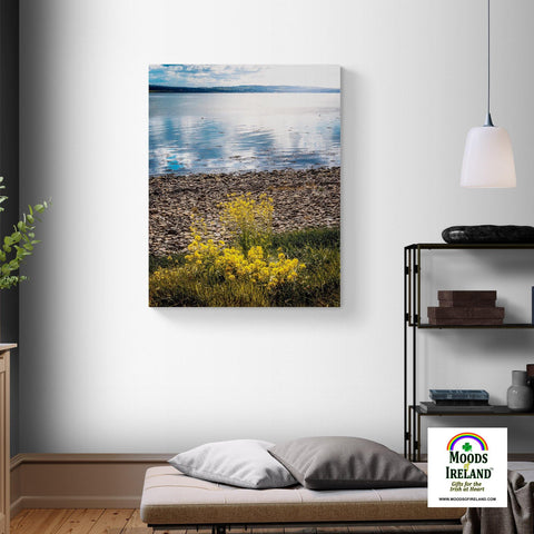 Canvas Wrap - Yellow Flowers on Shannon Estuary Shores, County Clare - James A. Truett - Moods of Ireland - Irish Art