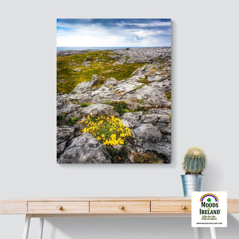Image of Canvas Wrap - Gorse in the Rugged Burren Limestone - James A. Truett - Moods of Ireland - Irish Art