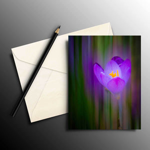 Flat Cards - Irish Spring Crocus at Coole Park, County Galway, Note Card, Photo Card, Irish Art Flat Photo Card Moods of Ireland