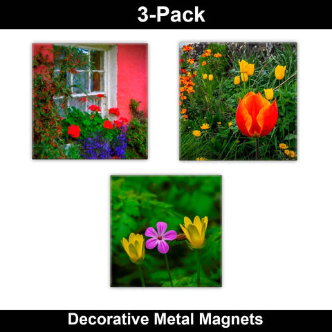 Image of Metal Magnets - Irish Flowers Collection Metal Magnets Moods of Ireland 2x2 inch, 3 Pack