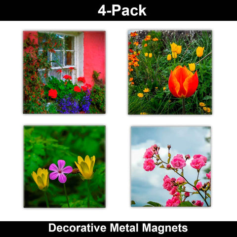 Metal Magnets - Irish Flowers Collection Metal Magnets Moods of Ireland 2x2 inch, 4 Pack
