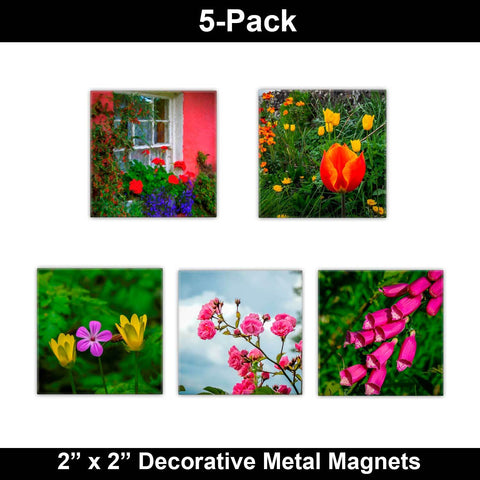 Image of Metal Magnets - Irish Flowers Collection Metal Magnets Moods of Ireland 2x2 inch, 5 Pack