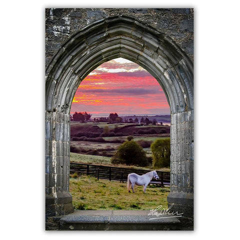 Image of Canvas Wrap - Horse at Sunrise in County Clare - James A. Truett - Moods of Ireland - Irish Art